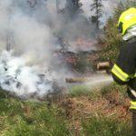 U Chabičova včera hořel les