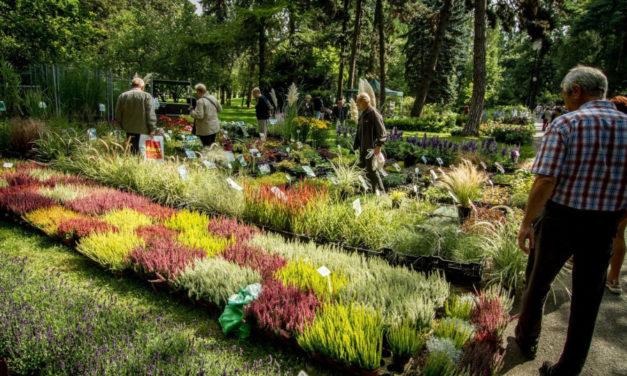 Podzimní Flora zve návštěvníky na Zahradní slavnost