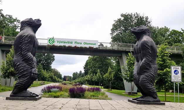 Vstup do aleje střeží dvě sochy lidoopů